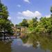 Canal de l'Etier, lac de Grandlieu (44)