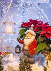 Papá Noel y su farolillo (Raquel M.G.) Tags: tradicional celebraciones navidad colores blanco rojo nieve papánoel alegría luces farolillos azul brillante iluminación