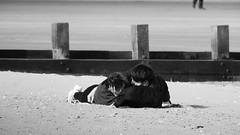 I will hold you (byronv2) Tags: coast coastal beach portobello river riverforth rnbforth firthofforth forth sea northsea edinburgh edimbourg scotland lyingdown hug hugging embrace man woman girl romantic cuddle sand blackandwhite blackwhite bw monochrome