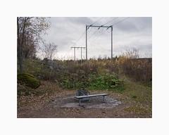 Bojsenbeach, Falun 2018 (Karl Gunnarsson) Tags: g80 panasonic20mmf17 bojsenbeach falun dalarna sweden sverige powerlines greysky greyskies overcast autumn foliage trees bench