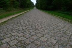 Old Road (Jolita Kievišienė) Tags: lithuania lietuva kelias stony akmeninis