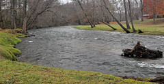 RIVER 1 (KayLov) Tags: swannanoa scenery asheville grove park inn