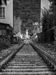 Train to Paradise (Riccardo Palazzani - Italy) Tags: pisogne rail train rotaia treno ferrovia lake iseo