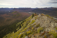 Linda Creek hill top (JR-pharma) Tags: alaska usa united october northwest north west automne fall states america roadtrip road trip photoroadtrip hiking hike 2015 french français nature aventure liberty liberté canoneos6d canon6d mark 1 canon eos 6d classic jrpharma daltonhighway dalton highway wiseman coldfoot