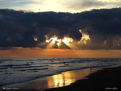 IL GABBIANO SOLITARIO. (Salvatore Lo Faro) Tags: alba mare sole nuvole nubi riflessi sabbia onde risacca rosso raggi acqua adriatico gargano rodi puglia italia italy natura salvatore lofaro canon g16