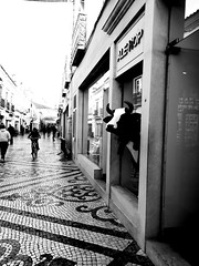 Hide and Seek (Justine Sautjeau) Tags: blackandwhite bnw animals city trip travelling faro portugal