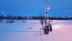 Fossen area, middle of the day (GeirB,) Tags: varanger vadsø vadsoe vadso varangerfjorden vinter vintersykling winter winterwonderland arctic 70north lakeboots uteliv friskifinnmark friluft finnmark østfinnmark outdoor liveterbestute garmin shimano xtr sram nx circogigantexl hardrocx wbt jumbojim 26x48 sweethelmet craft swix diadora oakley pearlizumi january 2019 snow snø bikelife fatbike nordnorge northernnorway barentsregionen norway