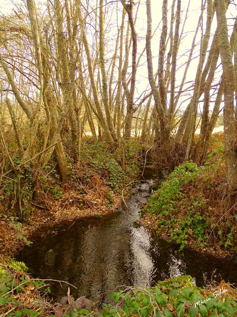 Águas Frias (Chaves) - ... e as águas frias correm lentamente, serpenteando a paisagem ...
