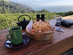 Ambrosia Burger with Fries and Tea (sarahstierch) Tags: bigsur california travel highway1 frenchfries fries tea burger nepenthe montereycounty dining lunch lunchtime sandwich basket