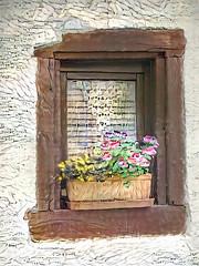 Deutsche Blumenkasten (Eclectic Jack) Tags: ddg generator dream deep processing processed process post manipulated german flower box europe
