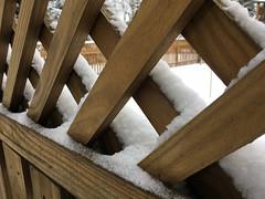 snow on fence (karma (Karen)) Tags: baltimore maryland home backyard fences snow dof iphone hff