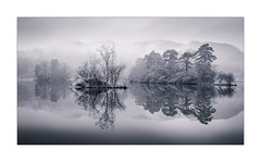 Fade Away (Dave Fieldhouse Photography) Tags: lakedistrict lakes rydal rydalwater reflections islands trees monochrome mono blackandwhite landscape winter misty rain cumbria cloud still fuji fujifilm fujixt2 wwwdavefieldhousephotographycom