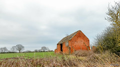 Nettlehill Circular Walk 6th January 2019 (boddle (Steve Hart)) Tags: coventry england unitedkingdom gb nettlehill circular walk 6th january 2019 steve hart boddle steven bruce wyke road wyken united kingdon great britain canon 5d mk4 6d 100400mm is usm ii 2470mm standard dji fc2103 mavic air wild wilds wildlife life nature natural bird birds flowers flower fungii fungus insect insects spiders butterfly moth butterflies moths creepy crawley winter spring summer autumn seasons sunset weather sun sky cloud clouds panoramic landscape 360 arial