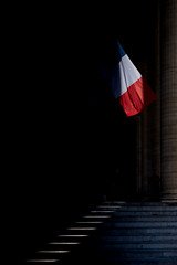 (dinuxm1) Tags: flag france pantheon midday light