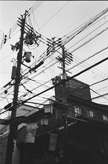 Nara (#argentic #35mm #noadjustments) Tags: japan nara roadtrip 35mm canon af35 analog film streetphotography noadjustments blackandwhite
