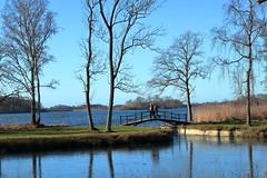 Søndersø (harve64) Tags: maribo lolland denmark søndersø winter lake bridge