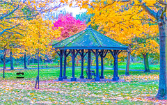 Regents Park (Abedin's clicks) Tags: uk london landscape colour cloudysky evening tree grass green park