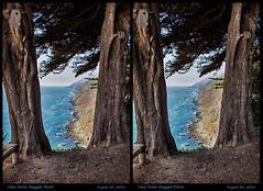 3D-PacificCoast-14 (stereo_eyz) Tags: 3d pacific coast ocean bigsur raggedpoint california seascape