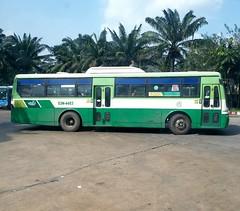 1-5 Auto B80 on bus line number 102 connects September 23rd park and Western bus terminal via Nguyễn Văn Linh boulevard  Vehicle license plate: 53N - 4483#buytsaigon #bus102 #transinco #1_5auto #vinamotor #hyundai #hyundaibus #congvien23thang9 #chobenthan (phanphuongphi) Tags: vinamotor chobenthanh daihocrmit benxemientay hyundai daihocnguyenttatthanh transinco congvien23thang9 benhvienvietphap hyundaibus 15auto benthanhmarket buytsaigon bus102 rmit buudienquan4 vongxoayanlac francovietnamesehospital benhvientrieuan nguyenvanlinhboulevard khuchexuattanthuan chodaumoibinhdien