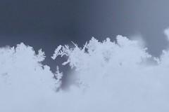 "Melting snow crystal (joka2000) Tags: ""macro macromondays picktwo damagedabstract hmm snow crystal"