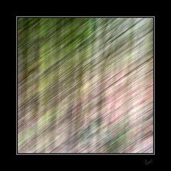shot silk (After-the-Rain) Tags: ©joanthirlaway trees silk intentionalcameramovement icm movement abstract january2019 woodland winter