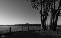 GG Bridge and Marin Headlands from Coastal Trail (skot917) Tags: 2018 afs1635mmf4 coastaltrail d810 goldengatebridge marinheadlands nikon sanfrancisco sunset