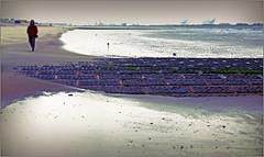 Sur la plage de Knokke, Belgium (claude lina) Tags: claudelina belgium belgique belgië knokke merdunord noordzee plage sable beach cabines briselame