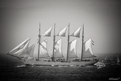 Juan Sebastian El Cano (alfonso-tm) Tags: barco navio bw mar oceano velero