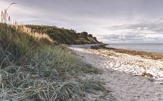 Beach (Krüger Fotografie) Tags: beach strand kiel bülk ostsee balticsea meer ocean coast küste landschaft landscape norddeutschland nature natur gras relax sand steilküste nikon