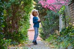 Everett On The Secret Path (Joe Shlabotnik) Tags: foliage foresthills fall queens blurry everett autumn foresthillsgardens justeverett 2018 november2018 afsdxvrzoomnikkor18105mmf3556ged
