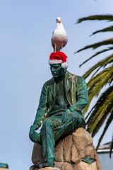 Seagull on a Statue (Eric Bloecher) Tags: christmas hat statue seagull rock tree sky bird animal wildlife monterey california