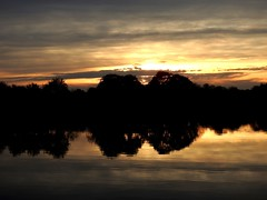 sunset  today in my city (BrigitteE1) Tags: sunset sonnenuntergang bremen weser fluss river riverweser deutschland germany november herbst autumn fall bäume trees himmel sky wolken clouds reflexion reflections dämmerung dusk abend evening abendstimmung eveningmood geotagged