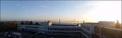 Day 310 (kostolany244) Tags: 3652018 onemonth2018 november day310 6112018 kostolany244 samsunggalaxys5 europe germany geo:country=germany month panorama sunrise fog 365the2018edition