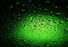 """""""Green is the Theme""""..x (Lisa@Lethen) Tags: macromondays theme green water droplets card glass macro"""