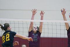 IMG_4712 (SJH Foto) Tags: girls high school volleyball garnet valley north allegheny state semifinals net battle spike block action shot jump midair