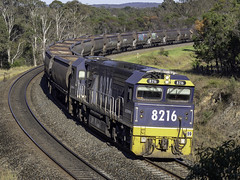 Pacific National's locomotive 8216 leading empty coal train approaching Bargo curve (Paul Leader - Paulie's Time Off Photography) Tags: 82class bargonsw freighttrain locomotive8216 pacificnational 8216 railpage:class=51 railpage:loco=8216 rpaunsw82class rpaunsw82class8216 olympus olympusomdem10 paulleader trainspotting train locomotive loco engine diesel railway rail railroad railtransport transport transportation freight nsw newsouthwales australia