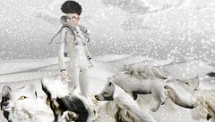 ENCOUNTER (tralala.loordes) Tags: tralalaloordes secondlife sl vr virtualreality slfashionblogging jian sole awa lali futurism arcticfox cyber alien bento shumesh scifi sciencefiction tundra snow winter space photoshop flickrart {letituier}cubahairmenshairalthoidunnowhytheythoughtso alienlanding