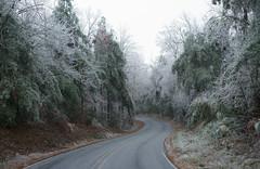 Emerald Swerve (oldoinyo) Tags: trees ice glazing freezingrain icestorm northcarolina