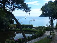 Trebah Garden (Marit Buelens) Tags: uk england cornwall trebah helfordriver river beach pond garden tuin botanicalgarden tropicalgarden palm hydrangea hortensia bench boats mawnansmith falmouth