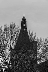 Caged Tower (frisiabonn) Tags: tower bw black white monochrome greyscale dark tree branches winter building outdoors england britain british cage liverpool merseyside old uk