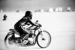 humblebee (fe2cruz) Tags: 135mm 28 2018 alphamount ca elmirage ilce minolta sony southerncalifornia a7r alpha conversionlens drylakebed mirrorless motorad motorbike motorcycle racing α7r