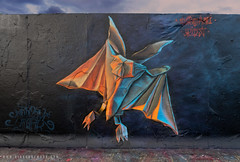 Origami Bat (Airborne Mark) Tags: origamiart origami bat origamibat airbornemark