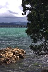 Day's Bay, Eastbourne - New Zealand (doctora85) Tags: water coast ocean beach sea sand