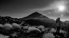 Under the Sun / Bajo el Sol (López Pablo) Tags: teide national park izaña bw black white people backlight mopuntain bush nikon d7200 tenerife canary island spain