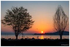 Silhouettes (Pascale_seg) Tags: landscape paysage lake lac lago trasimeno trasimène italie italy italia umbria ombrie automne autumn autunno coucherdesoleil soleil sundown tramonto sanfeliciano orange nature natura earth terra arbre tree alberi nikon