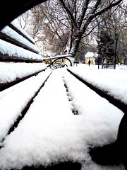 Snow (msergeevna) Tags: prestigio snow frost november russia winterbeauty