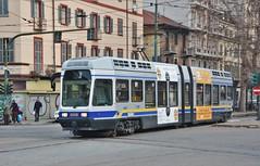 Torino, Corso Regina Margherita 14.01.2018 (The STB) Tags: tram tramway strassenbahn strasenbahn tranvía tranvia torino turin trasportopubblico publictransport citytransport öpnv