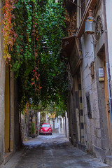 Damascus Alley 2 (iTariq Za) Tags: damascus damas damascene syria sigma syrian sky street arabia square edition youth old road panorama plants lens lapse light life cloud 15871608158516101575 1583160515881602 example canon cars 7d 70300 macro alley