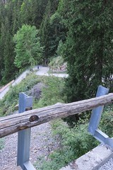 the steep road to Taney (Riex) Tags: road route chemin path way steep raide slope pentu pente mountain montagne alps alpes woods arbre tree bois taney lacdetaney valais wallis suisse switzerland g9x