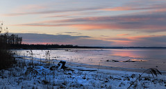 Chiemsee - Hirschauer Bucht (rotraud_71) Tags: winter chiemsee hirschauerbucht eveninglight water reflections sky clouds snow trees germany bavaria